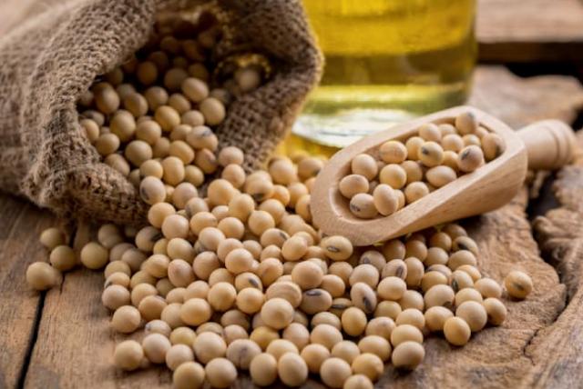 Thực phẩm giảm cân giàu thành phần protein và ít calo cho người giảm cân
