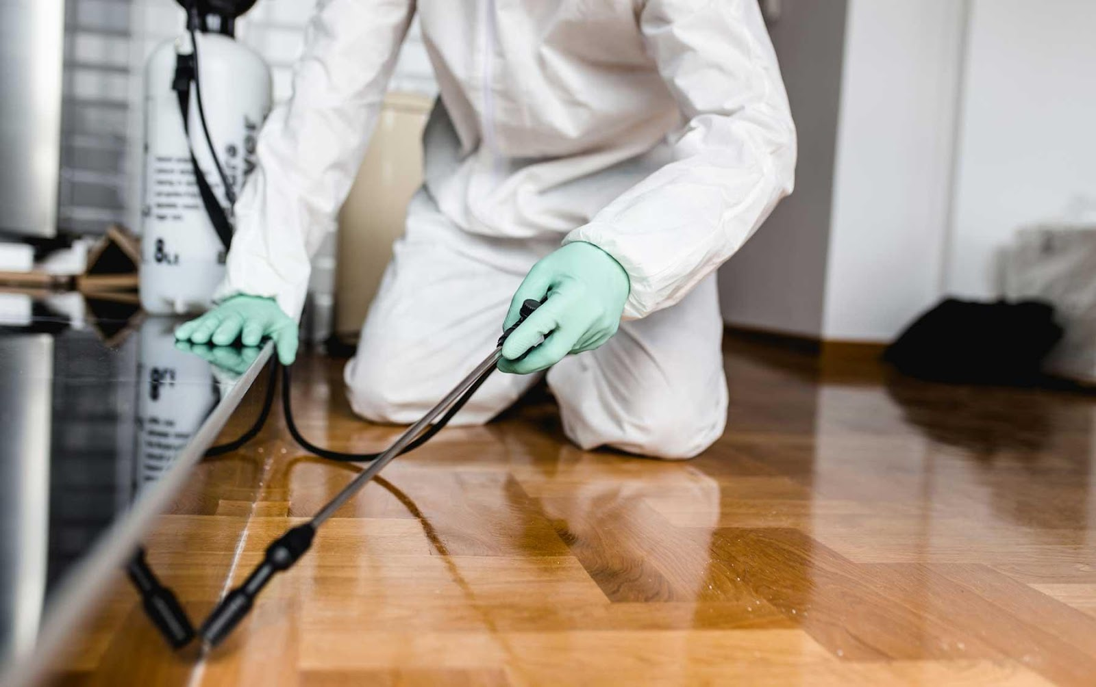What is the average cost for pest control service? | Zone Home Solutions