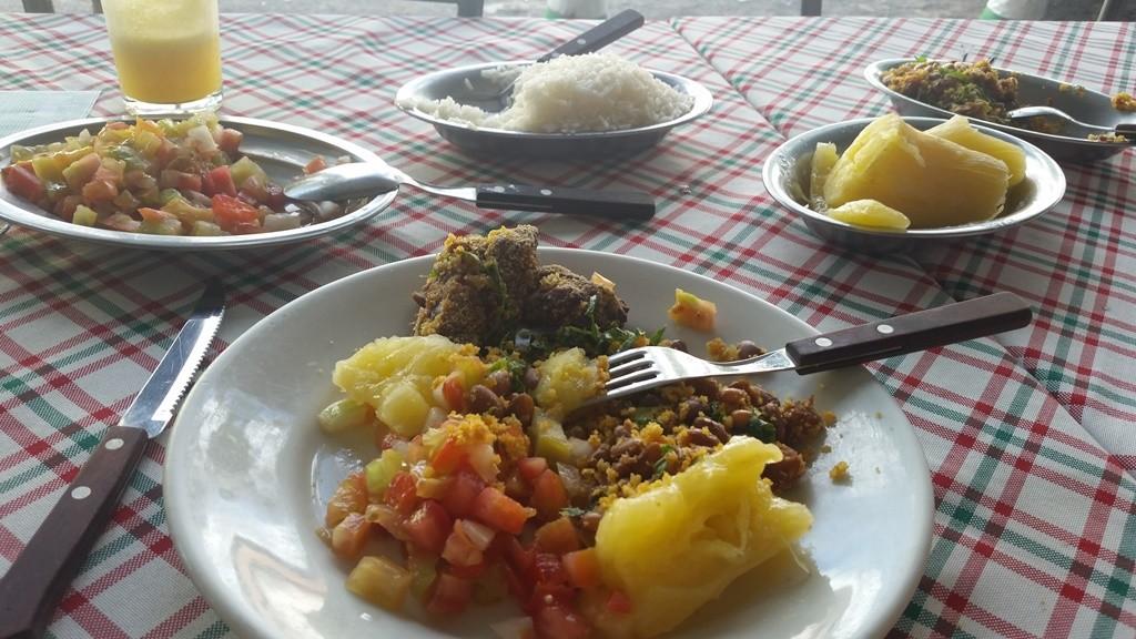 comer churrasco em goiania lary di lua (3)