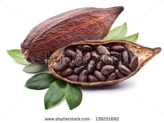 https://image.shutterstock.com/display_pic_with_logo/118042/139251692/stock-photo-cocoa-pod-on-a-white-background-139251692.jpg