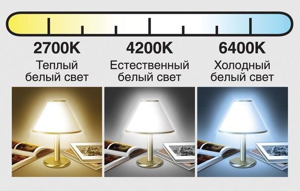 Цветовая температура ламп (теплый, естественный, холодный свет)