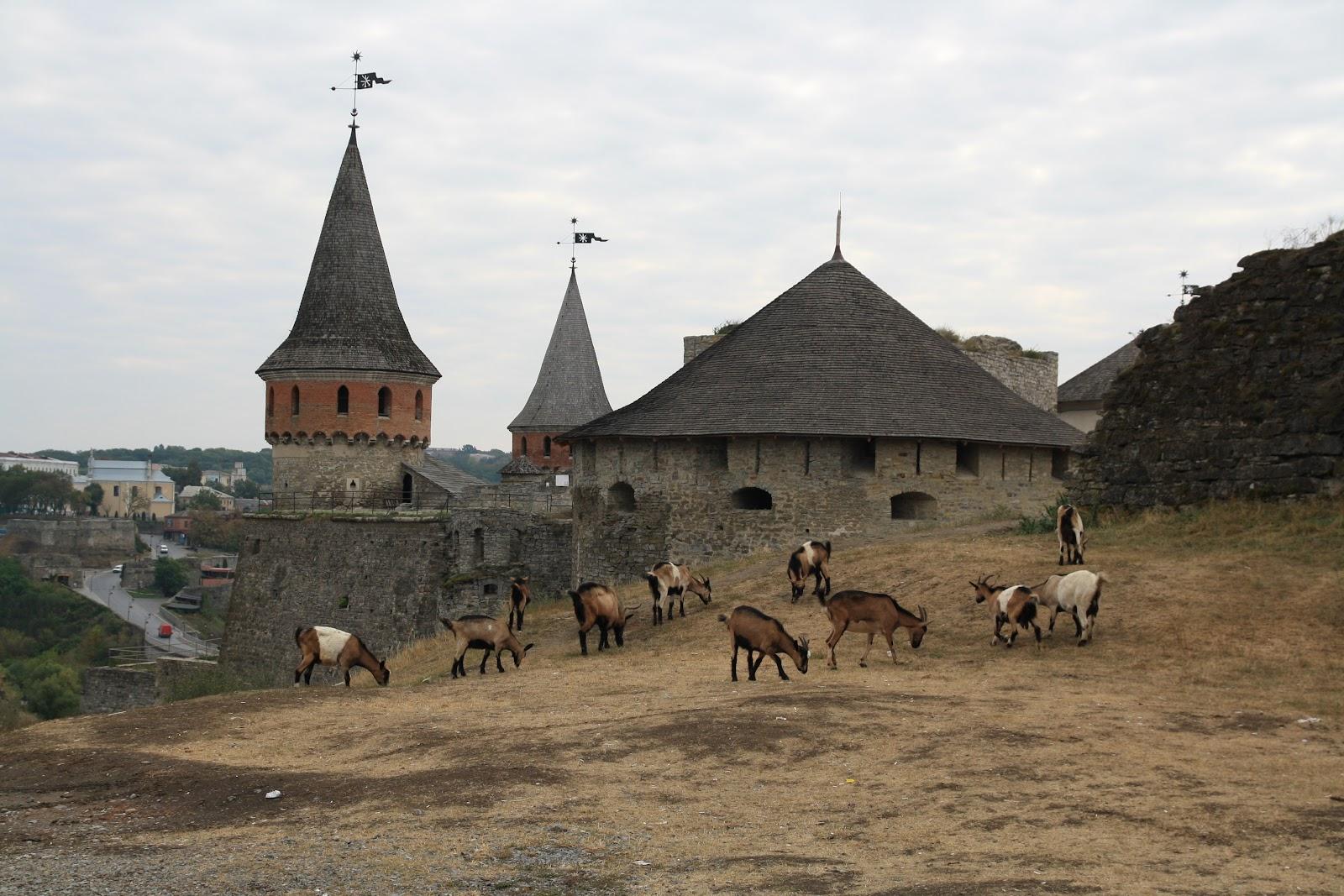 Вид на Кам'янець-Подільську фортецю збоку