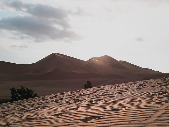 Descubre el desierto costero Huacachina