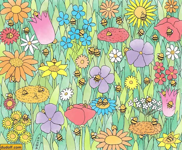 Olhe a foto das abelhas e diga quantas você pode ver em apenas 10 segundos.  (Foto: Facebook / Dudolf)