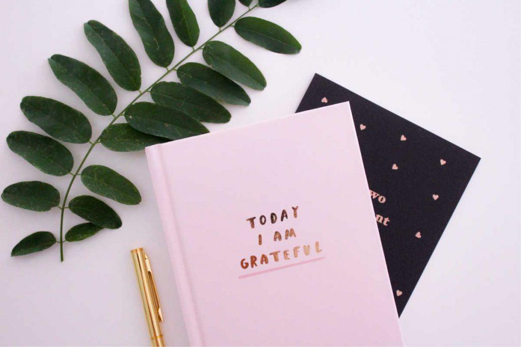 manifestation techniques gratitude journal