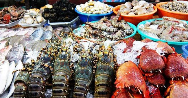 Những món ăn hải sản khiến du khách nhớ mãi không quên khi đến Cô Tô