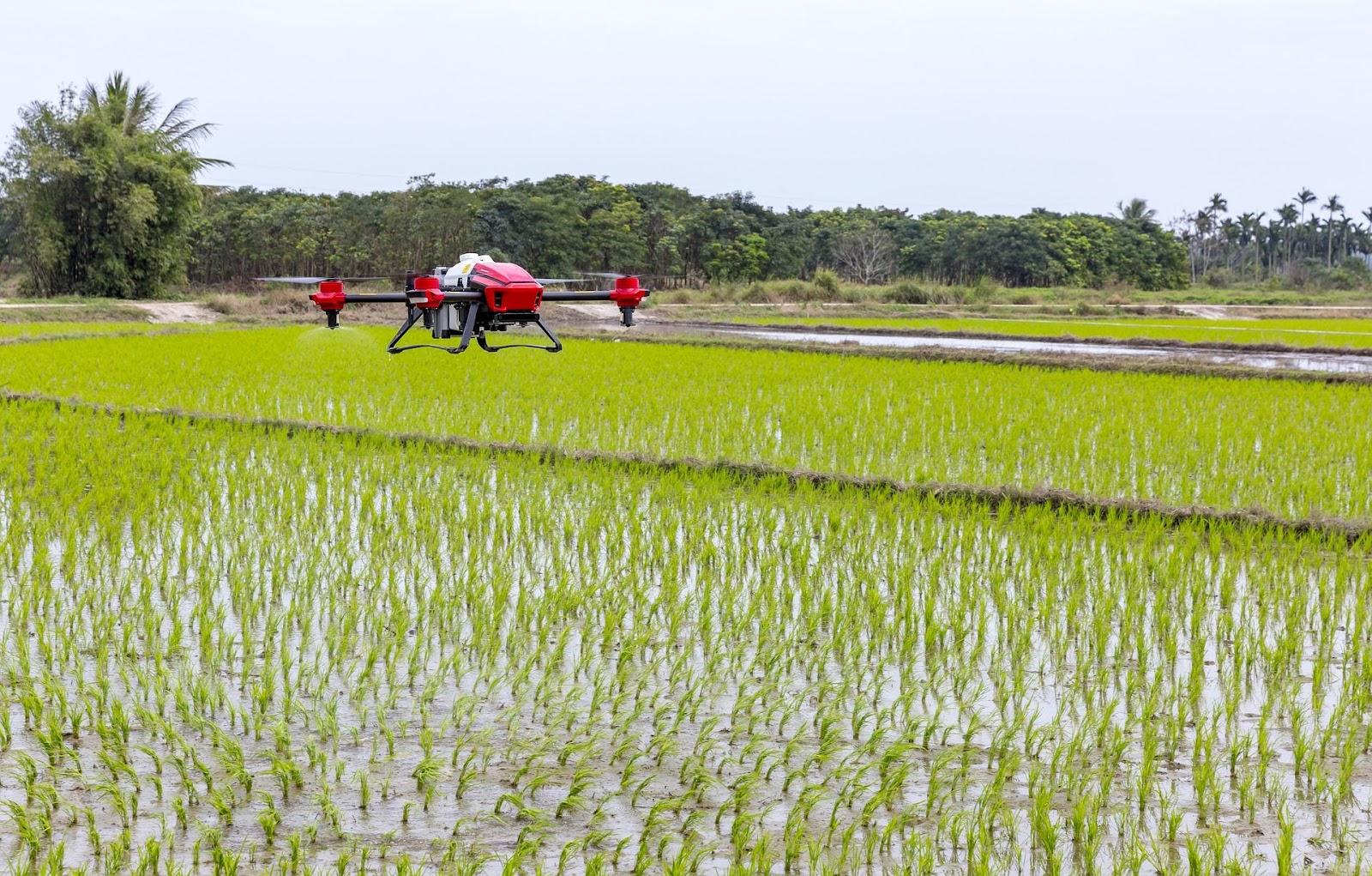 Drones en la Agricultura 4.0.