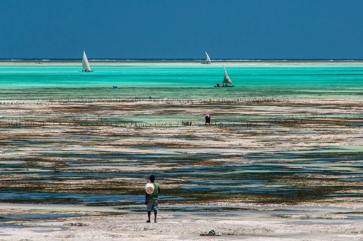 Изображение выглядит как пляж, внешний, вода, земля  Автоматически созданное описание