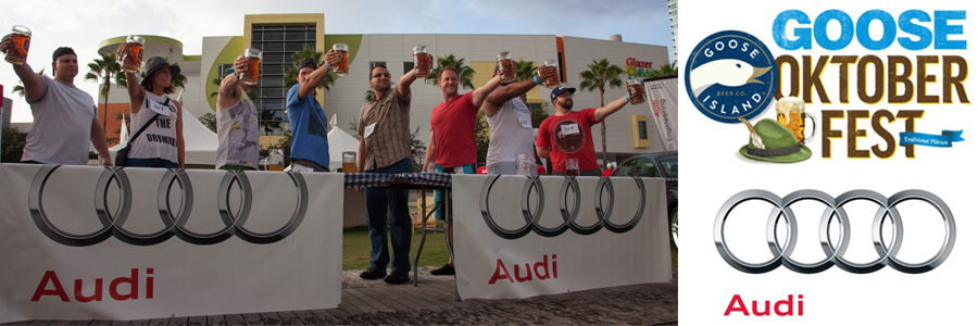 audi_goose_header_photo collage footer_2017_.jpg