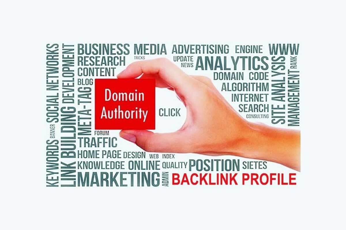 Có được các liên kết ngược của trang web có thẩm quyền để xây dựng cơ quan quản lý miền