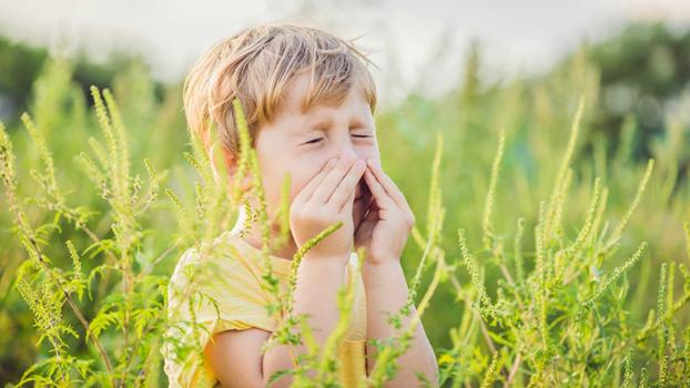 На что бывает аллергия и опасна ли она?