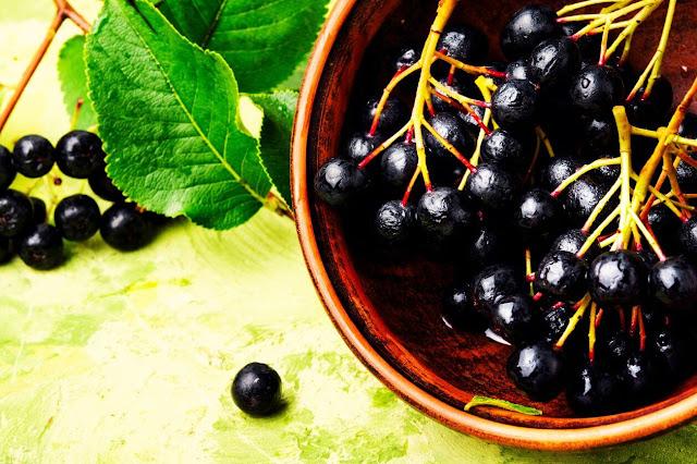 chokeberry benefit
