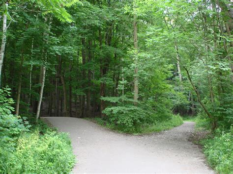 Two Roads Diverged in a Wood   (Lambton Woods, Toronto)   Flickr