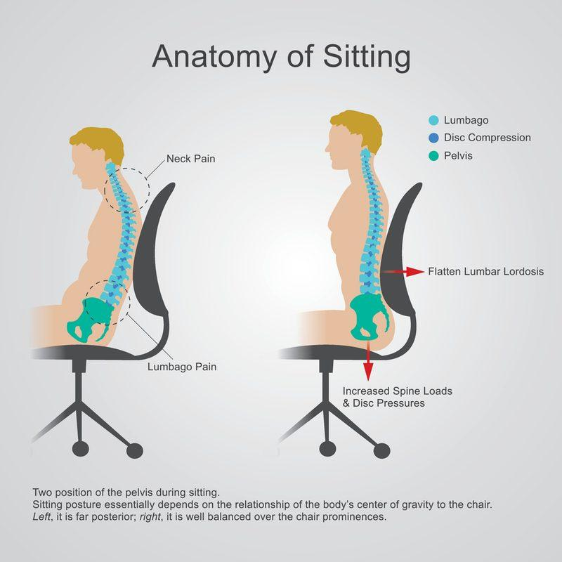 What is the Correct Ergonomic Sitting Posture in the Office?