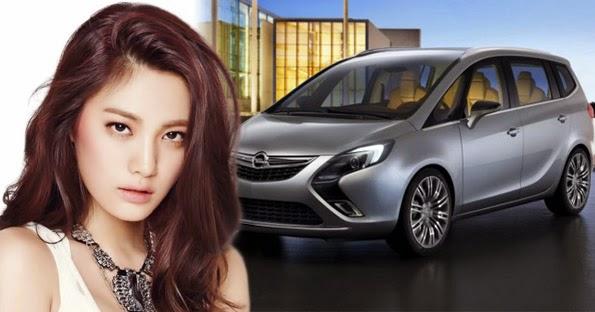 Opel Vauxhall Zafira Tourer Service Oil Light Reset