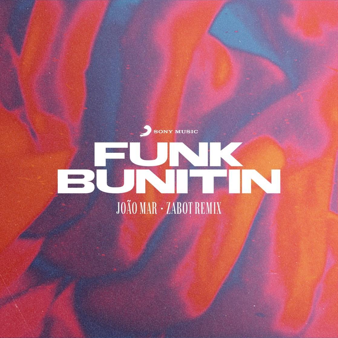 C:\Users\Louise\Downloads\Funk Bunitin Capa 3000x3000.png