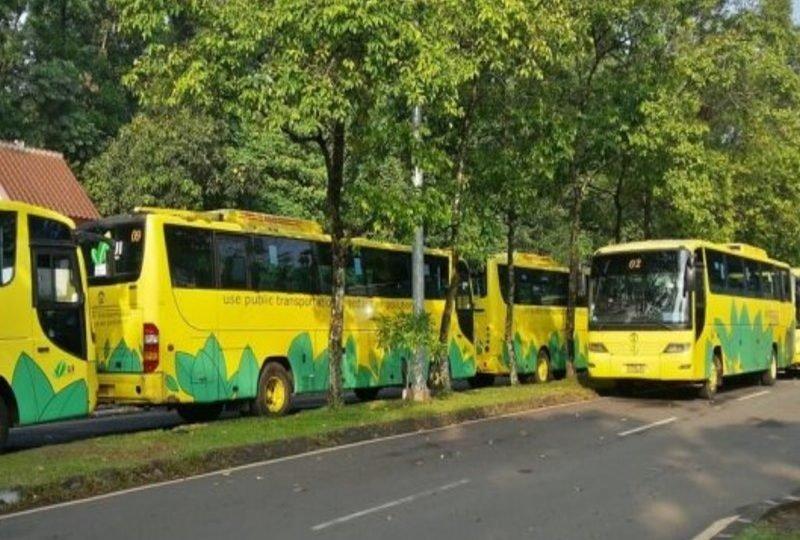 Rindu Bus Kuning alias Bikun UI yang Sering Dianggap Bus Paling Nyaman –  Terminal Mojok