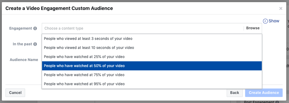Example of Custom Audiences in Facebook
