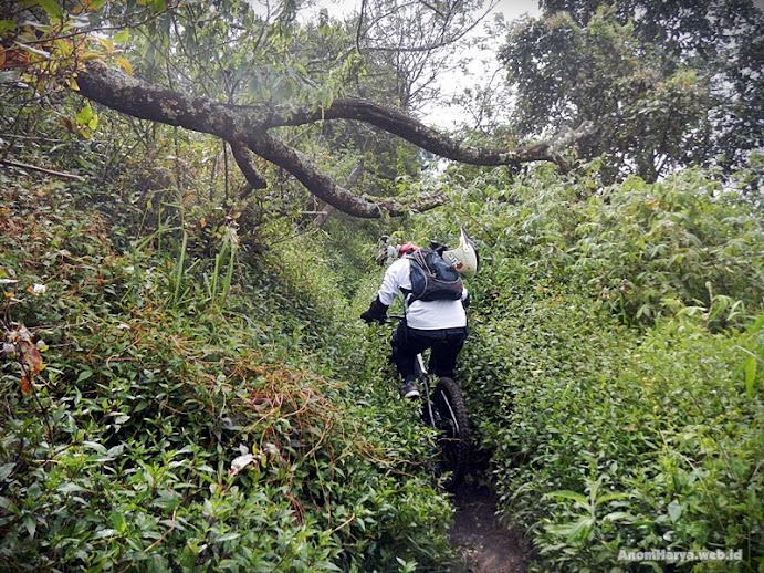 Menjelajah single track menuju Jantur
