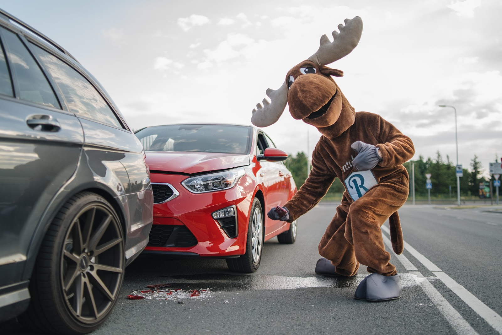 Rental Moose mascot is photographing a red crashed Kia rental car. Always take pictures of a collision in your rental car. Rentalmoose is a worldwide car rental broker.