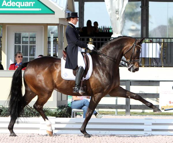 Trotting Up A Storm | Hooves