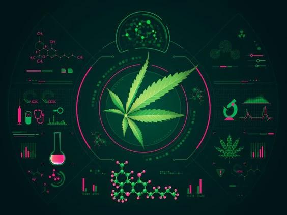 emerging cannabis technology - gene editing
