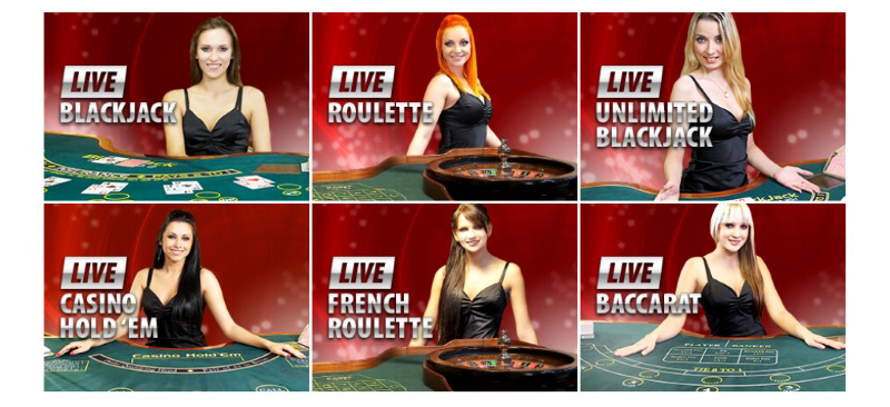The Pleasure Of Live Casino Gaming And Gambling Happycatshouse