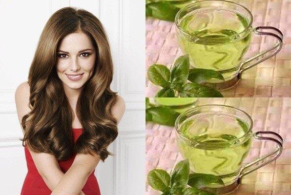 Uống nước trà xanh kết hợp gội đầu bằng trà xanh chữa rụng tóc rất hiệu quả