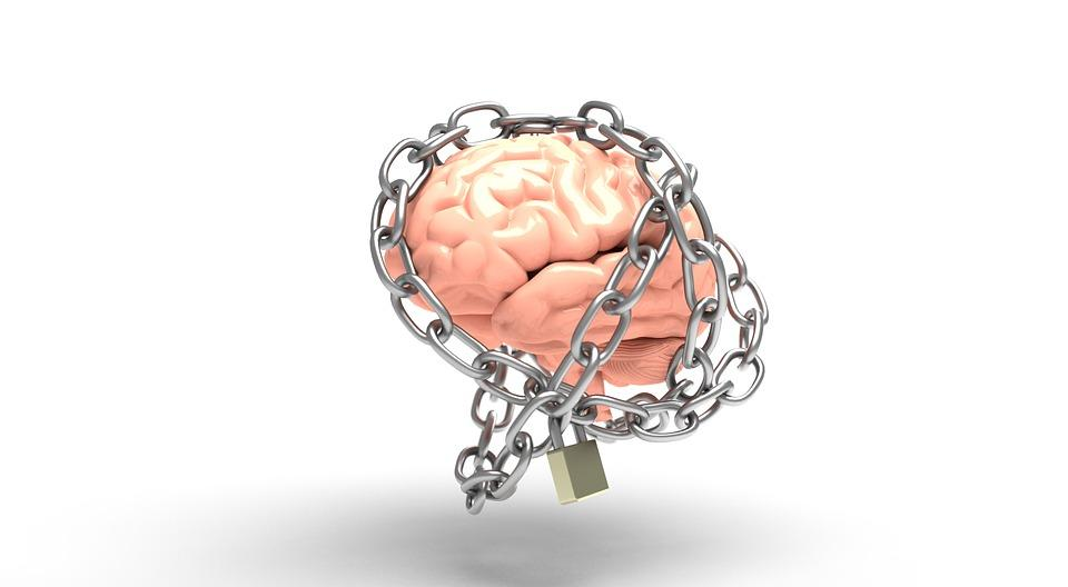 brain-3446307_960_720.jpg