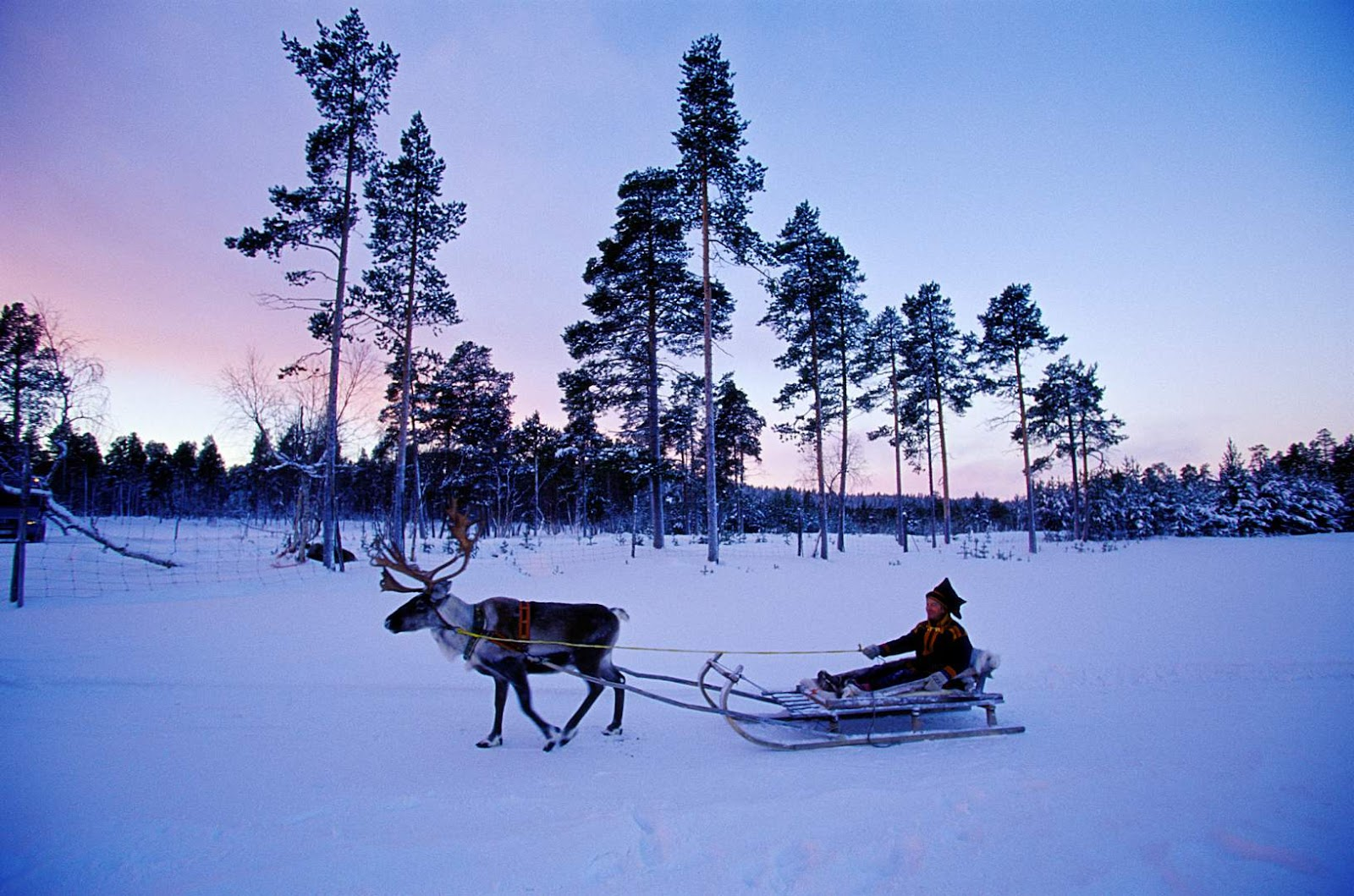 laplandfinlandchristmas.jpg