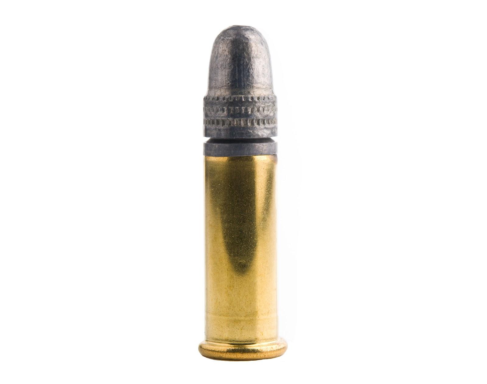 rimfire ammo