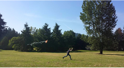 kite flying.png