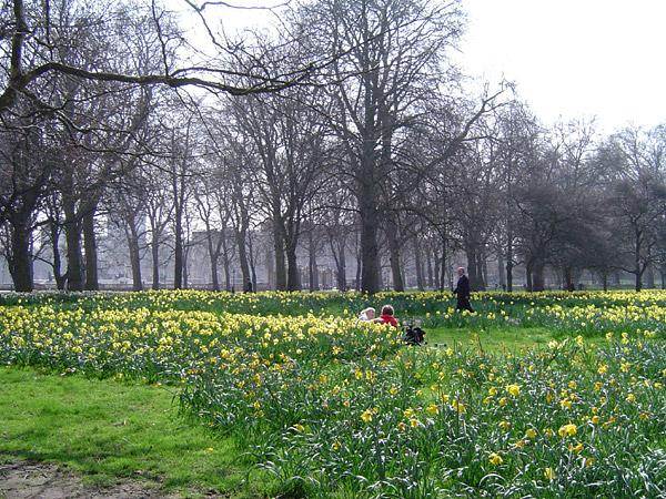 File:Green Park, London, England.jpg