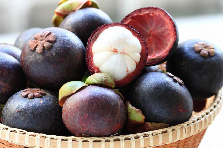 Những loại trái cây thanh lọc cơ thể cho ngày hè nóng nực X-dFiE15qdRgtqbp35WPCZfaY2jE1xQsS7Rh-JwzxlsKI16gz1ei4II_XTmIXK-NxJ14NnK_u98FjoMQY3sWUA4O4VIrh7Lrqwk9U0lk8IMJSwRc67Re28tUqBV4flR_niN0OuIy
