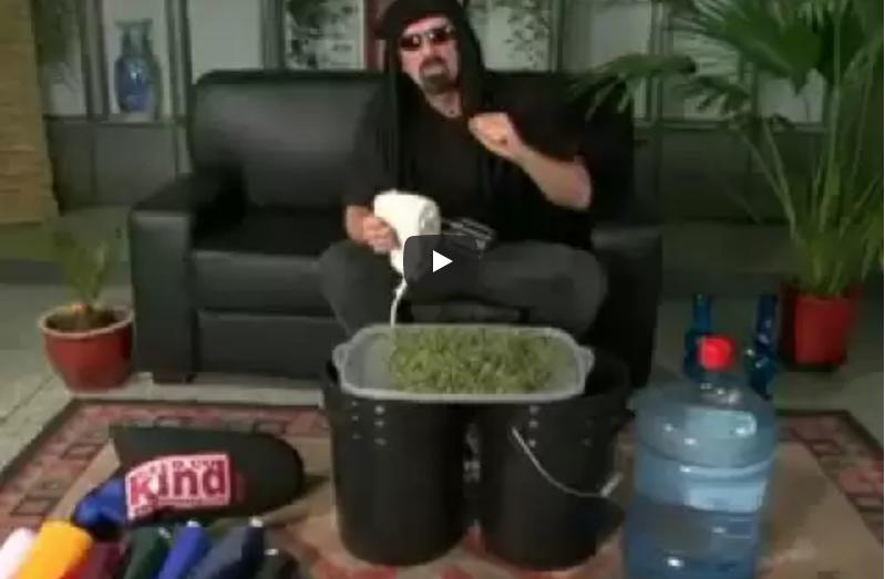 bubble hash video