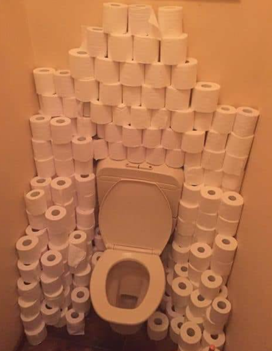 Image result for toilet paper throne