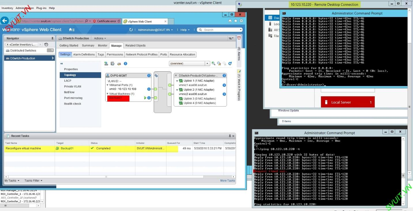 migrate VM Network from vSS to vDS without downtime (12)