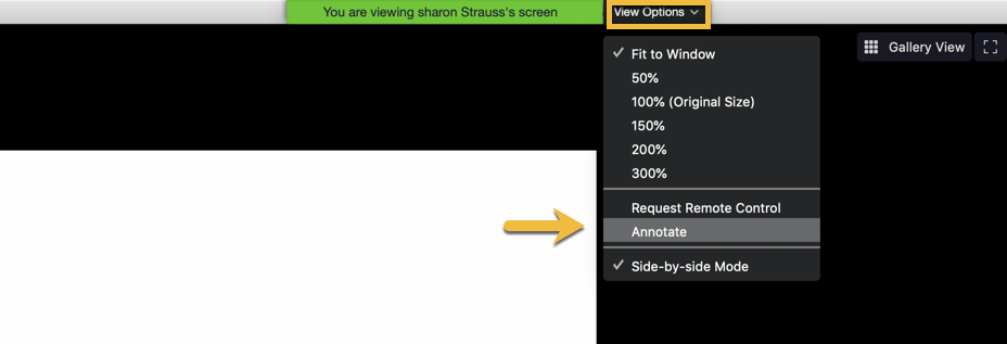 a screenshot showing how participants can annotate by clicking vide options