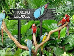 Jurong Bird Park Singapore Tour