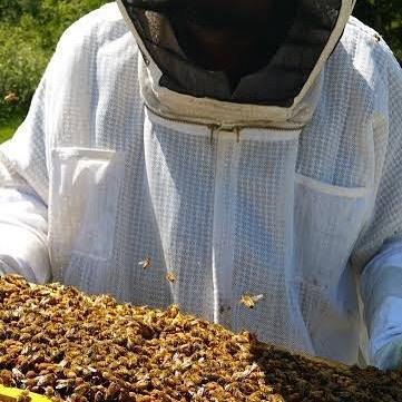 James Douglas, the owner and beekeeper of Huckle Bee Farms.