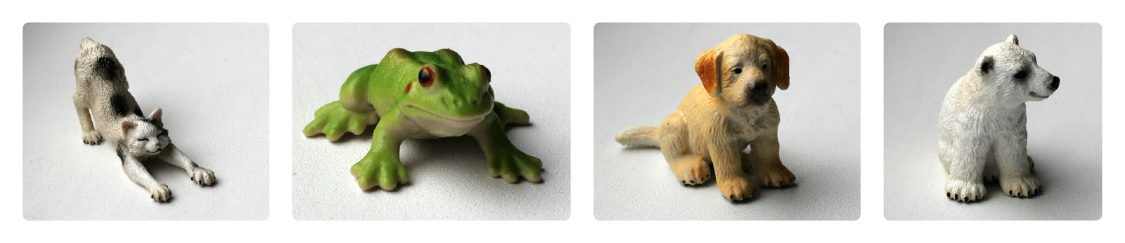 diff_animals.jpg