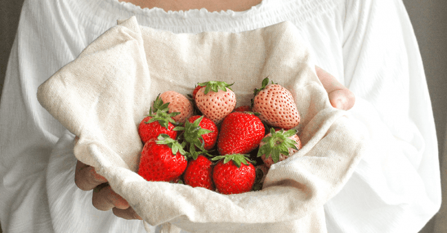 luxury-strawberry-production-brand03