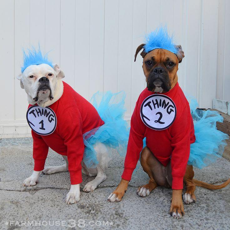 Image result for dog costume party