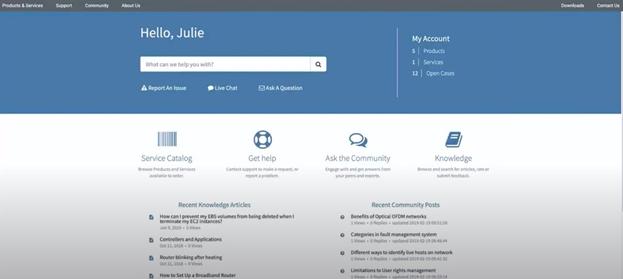 servicenow portal
