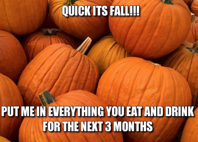 Image result for fall memes