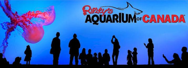715x260-ripleys-aquarium.jpg