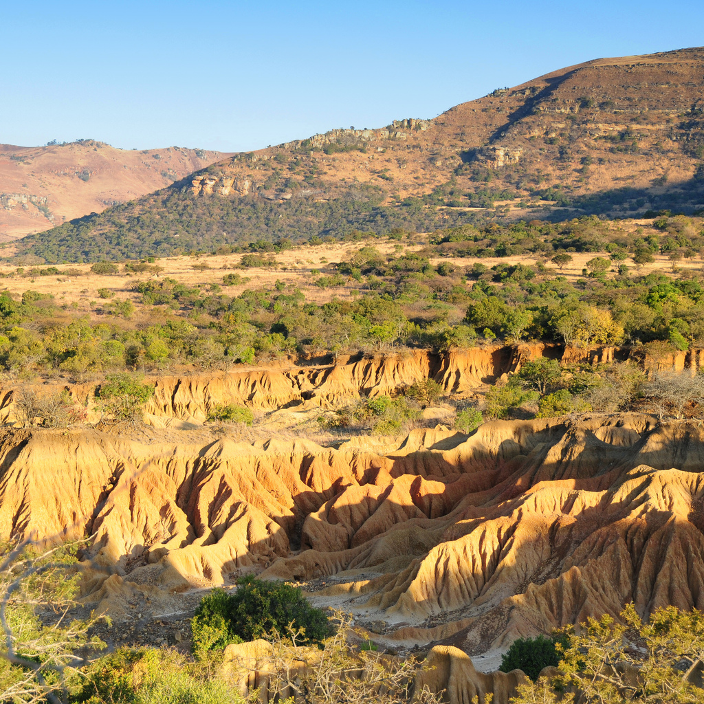 Donga system, soil erosion | Ithala game reserve | Vince Smith ...
