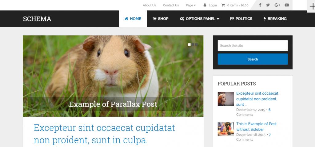 Schema é tema de destaque para wordpress mais rápido