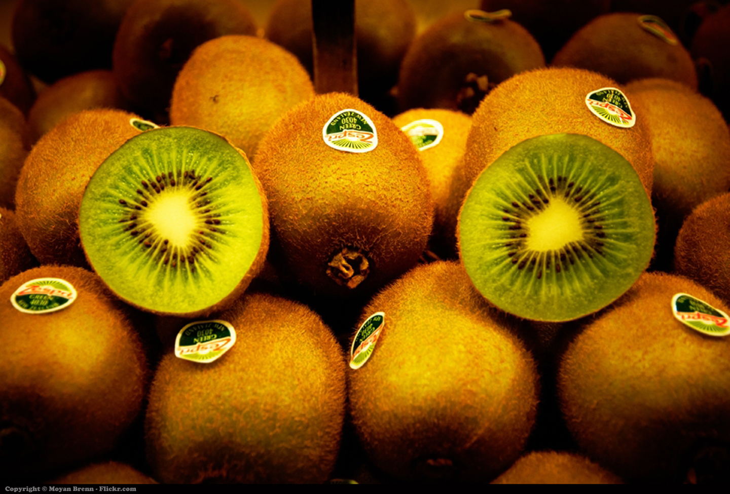 Kiwi fruit | Flickr - Photo
