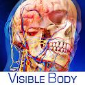 Human Anatomy Atlas apk